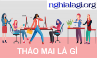 nghialagiorg's Photo